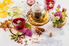 Травяной чай с травами и цветками Стоковое Изображение