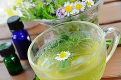 Травяной чай с эфирными маслами Стоковые Изображения RF