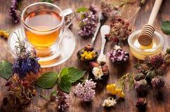 травяной чай трав стоковая фотография