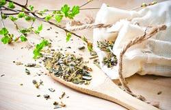 травяной чай стоковая фотография