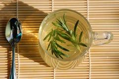 травяной чай rosemary Стоковые Изображения RF