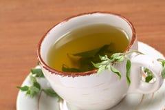 травяной muna чай вне Стоковые Изображения RF