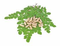 Травяные капсулы с лист на белой предпосылке стоковые фотографии rf