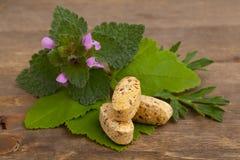 Травяные пилюльки витамина и дополнения с травами Стоковые Изображения