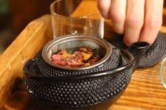 Травяные чая Стоковые Фото