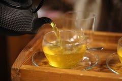 Травяные чая Стоковое Изображение RF