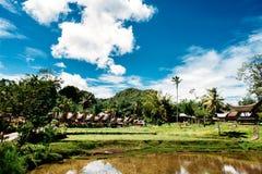 Традиционная деревня Tana Toraja, tongkonan дома и здания Солнечное, голубое небо с облаками, озеро в переднем плане Kete Kesu, п Стоковая Фотография