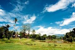 Традиционная деревня Tana Toraja, tongkonan дома и здания Kete Kesu, Rantepao, Сулавеси, Индонезия Стоковые Фото