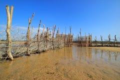 Традиционная ловушка рыб - залив Kosi стоковая фотография