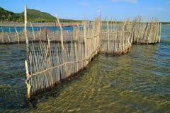Традиционная ловушка рыб - залив Kosi стоковые фото