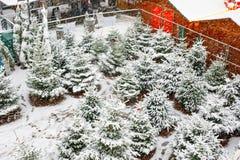 Традиционная немецкая рождественская ярмарка с продажей деревьев Xmas в историческом центре города в Германии во время снежностей стоковые изображения