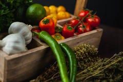 Традиционная простая еда настроила с мясом и овощами Стоковое Изображение