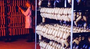 Традиционная смертная казнь через повешение сосиски в складе Стоковое Изображение RF