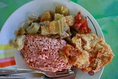 Традиционная Javanese еда содержа красный рис с dishe баклажана и яйца стоковые изображения