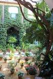 Традиционное андалузское патио Севильи в Андалусии, Испании стоковые фото