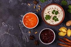 Традиционное индийское raita с огурцом, тимоном, кориандром и chu Стоковые Фотографии RF