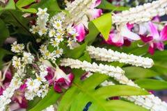 Традиционное тайское искусство флориста цветочной композиции, форма искусства в которой расположение живое существо где природа и стоковые изображения