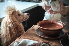 Традиционно делать домодельный сыр Стоковые Фотографии RF