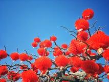Традиционные красные фонарики Стоковое фото RF