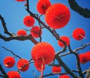 Традиционные красные фонарики Стоковое Изображение