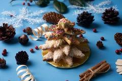 Традиционные печенья дерева пряника рождества Стоковая Фотография
