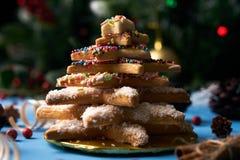 Традиционные печенья дерева пряника рождества Стоковые Изображения RF