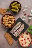 Традиционные русские закуска и водка, sauerkraut с клюквами, сельди, замаринованные огурцы, замаринованные грибы и хлеб рож стоковые изображения rf