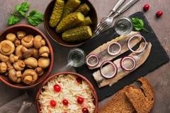 Традиционные русские закуска и водка, sauerkraut с клюквами, сельди, замаринованные огурцы, замаринованные грибы и хлеб рож стоковая фотография rf