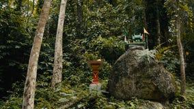 Традиционный буддийский алтар в джунглях Таиланда видеоматериал
