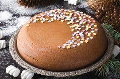 Традиционный домодельный торт рождества шоколада с звездами сахара и зефиром, украшением Нового Года стоковая фотография rf