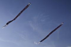 Традиционный змей Стоковая Фотография