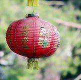 Традиционный красный китайский фонарик с зеленой естественной предпосылкой Стоковое Изображение RF