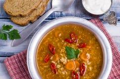 Традиционный пряный суп с рисом Стоковое фото RF