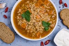 Традиционный пряный суп с рисом Стоковые Фото