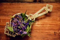 Традиционный русский зеленый травяной чай от Fireweed выходит: Чай чая Koporye, русских или Иван Chai Стоковое Фото