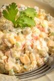 Традиционный русский vegetable салат Стоковое фото RF