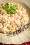 Традиционный русский vegetable салат Стоковые Фото