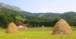Традиционный стог сена типичный взгляд в стороне Балканских стран стоковое изображение rf