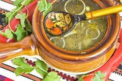 традиция супа предпосылки русская Стоковая Фотография RF