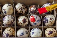 Традиция яичек расцветки Стоковое Изображение RF