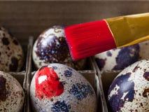 Традиция яичек расцветки Стоковое Изображение