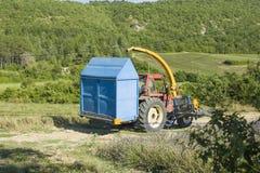 Трактор бежит на поле лаванды в сборе Провансали стоковое фото rf