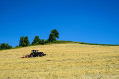 Трактор вспахивает поле в лете Стоковые Фотографии RF