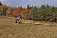 Трактор вытягивает упаденное дерево Работа в тракторе леса направляя рельсами отрезанные деревья из тимберса леса направляя рельс Стоковое Фото