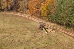 Трактор вытягивает упаденное дерево Работа в тракторе леса направляя рельсами отрезанные деревья из тимберса леса направляя рельс Стоковые Изображения RF