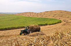 Трактор в поле стоковое фото