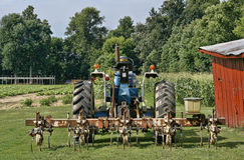 Трактор и рыхлитель Стоковое фото RF