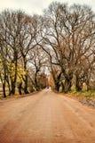 Трактор ландшафта сказки на дороге между сводами деревьев в деревне фермы осени Стоковая Фотография
