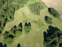Трактор отрезал haymaking травы на поле обрабатываемой земли, виде с воздуха Стоковые Фото