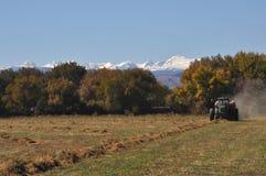 Трактор паша сжатое аграрное поле Стоковое Изображение